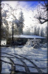 Snow... Snow... Snow... (Diana_Khalil) Tags: trees house snow birds oregon landscape platinumheartaward houseinthesnow mygearandme