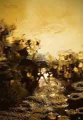 Bangles... to start the year... (Sandeep Somasekharan) Tags: abstract water gold drops nikon sandy rings ripples nikkor karnataka mysore bangles 300mmf4 d300s sandeepsomasekharan dwcffabstract sandyclix