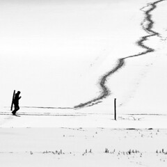 Follow the lead (skubmic) Tags: winter people blackandwhite bw snow field person path walk crosscountry lead korntalmnchingen skubmic 112011