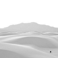 Lone Yucca (agavephoto) Tags: blackandwhite white mountain newmexico square soft whitesands dunes gypsum yucca whitesandsnationalmonument
