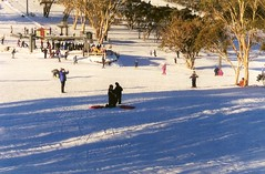 2002 Australia: Selwyn Snowfields #4 (dominotic) Tags: 2002 trees snow ski nature landscape movement skiing australia skiresort nsw newsouthwales toboggan snowymountains adaminaby skiers selwynsnowfields longarmrun townshiprun
