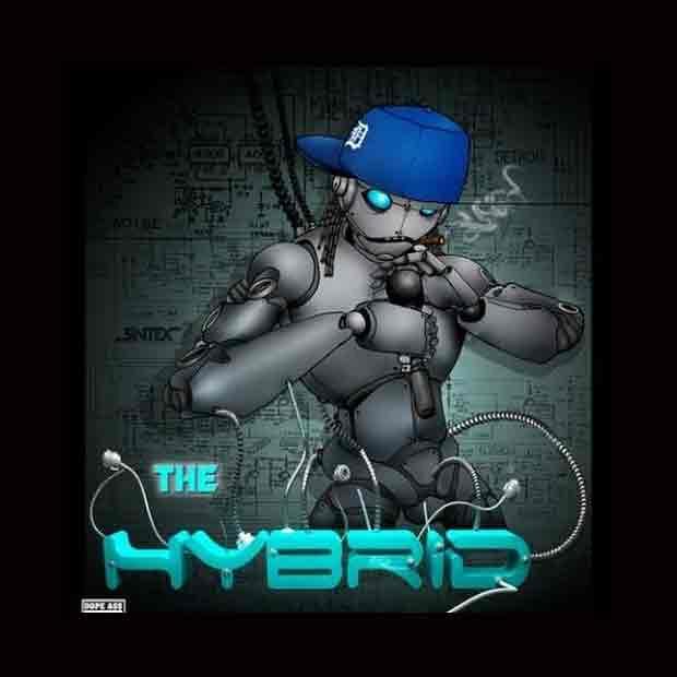 The-Hybrid