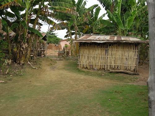 abutia shack