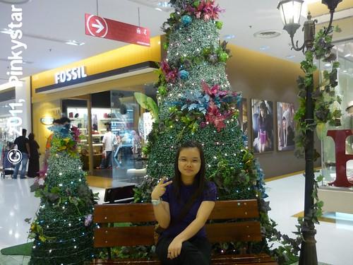 SunwayJan2011-1