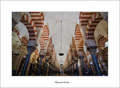 Mezquita de Crdoba (Cani Mancebo) Tags: espaa architecture andaluca spain arquitectura tokina mezquita crdoba columnas granito mrmol jaspe 1116 andalus 400d canoneos400ddigital 1116mm canimancebo tokina1116f28dxatxprocanon