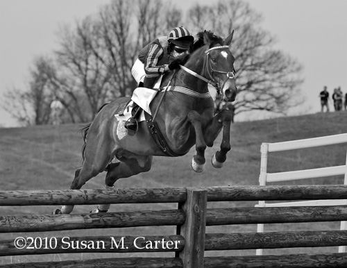 Endless Mountain and Ben Garner, steeplechase horse racing