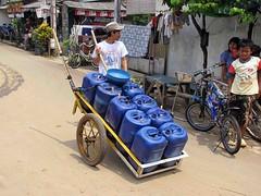 Water cart (Mangiwau) Tags: water festival indonesia java blood eid goat goats jakarta gore cutting lamb lambs cart throat kambing bogor slaughterhouse sacrifice slaughtering adha sacrificial potong idul dipotong