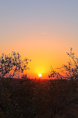Sunset (Ahmad Al Zarouni) Tags: blue sunset red sky plants sun yellow al desert framed horizon uae abudhabi sands alain  ain   nahl   nahil