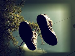 Converse In The Sky. (Kerrie...) Tags: light sky tree eye feet sepia vintage shoes day august line 09 converse hanging hang 2009 washing shoelaces