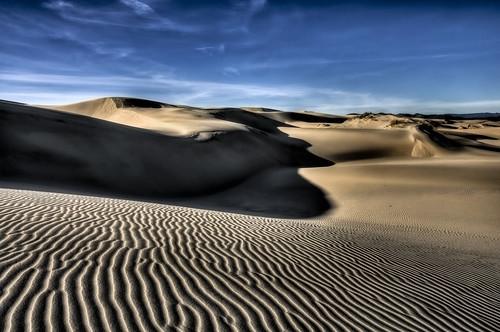 [フリー画像] 自然・風景, 砂漠, アメリカ合衆国, 201101180100