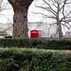 Phone (@andymatthews) Tags: tree london square phone hedge squareformat format layers londonphonebox nikond700 ©andymatthews