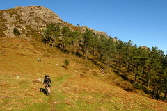 The Climb (basqueMTB - mountain biking holidays) Tags: holiday france french spain holidays mountainbike carlos ridge spanish mikkel mountainbiking pyrenees adarra basquemtb navarans
