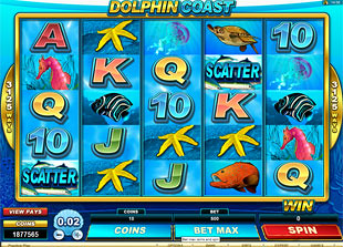 Dolphin Coast slot game online review