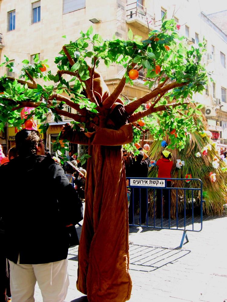 21-01-2011-jerusalem-festival-tu-bshvat3