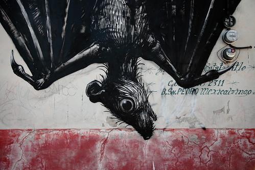 Murciélago por Roa