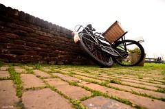 Holland capture 02 (jaume vaello) Tags: nikond5100 holanda holland sigma1020 bicicletas nikon