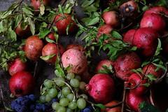 Natura (IO,Marina.) Tags: natura rosso vita autunno