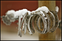Horse Shoes (Mark Payton) Tags: winter snow fence florence wire focus montana dof bokeh used horseshoes markpayton missoulaphotographer markpaytonphotography