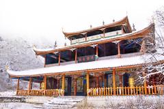 Huanglong Zhongsi Temple (Pic_Joy) Tags: china winter snow building architecture temple asia tibetan  sichuan   huanglong                   huanglongzhongsi    gic092012