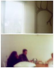 Petri 7 (YYNTL) Tags: test film window analog blurry blurred testing scanned blinds coffeetable tryout friesland fryslan unsharp leeuwarden hert wazig onscherp luxaflex analoog ljouwert gewei uitproberen petri7 sintnicolaasga 20082010 noordvlietstraat