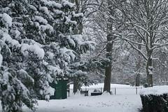 _DSC6566 (Europa Photography) Tags: winter england snow weather europe chaos westsussex unitedkingdom photojournalism location freeze environment southeast bognorregis stockcategories
