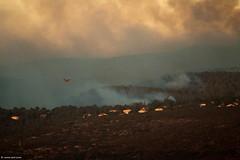 Hellenic Air Force Bombardier 415 - Amphibious water bomber (xnir) Tags: water photography israel photographer force aviation air aerial firefighting bomber amphibious 415 nir cl415 bombardier canadair  hellenic benyosef helenic xnir  photoxnirgmailcom