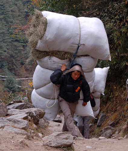 9porter carrying yak fodder copy.jpg