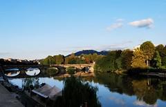 Río Po (Mariano Rupérez) Tags: río torino puente agua árboles italia po turín