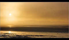 Burnt Orange... (Digital Diary........) Tags: mist seascape water fog sunrise flickrmeet hale burnoff chrisconway