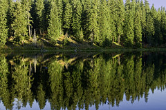 Dawn Reflection Clear Lake (chasingthelight10) Tags: autumn usa detail fall nature oregon centraloregon reflections photography landscapes seasons bend events lakes places foliage clearlake rivers vistas forests wildernesstrails cascaderange mckenzieriver rocksandtrees riparianhabitat mckenzierivertrail vinemaples otherkeywords oldmackenziepass