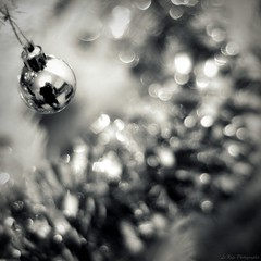 Bokeh & Reflex (Le***Refs *PHOTOGRAPHIE*) Tags: christmas light bw white black reflection silhouette nikon bokeh lumière noel nb explore reflet mm f18 50 frontpage guirlande sapin boule d90 lerefs