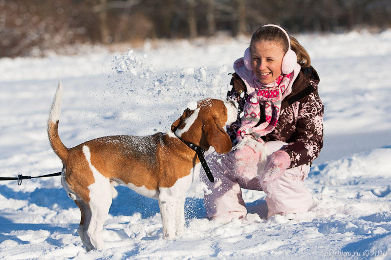 Walking with Maartin. Winter