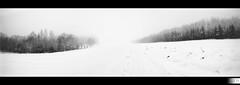 No Man's Land (HD Photographie) Tags: blackandwhite panorama white snow black france tree landscape noir noiretblanc pentax explorer ardennes explore neige hd paysage tamron arbre blanc herv k7 dapremont hervdapremont