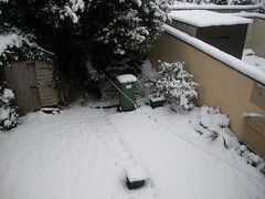 Winter wonderland..