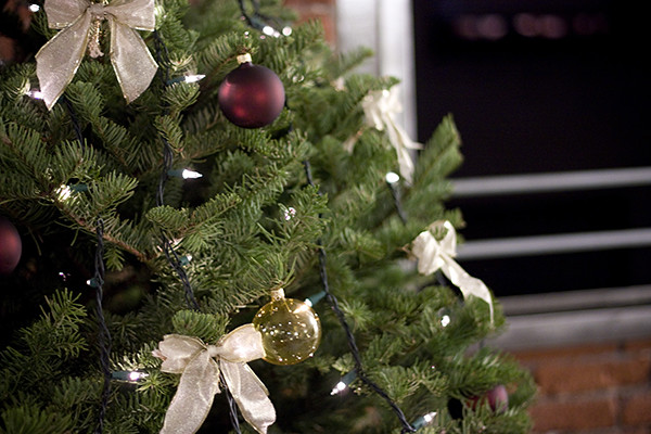 The-Little-Bra-Comapany-christmas-tree 600px
