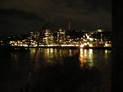 South Waterfront at night