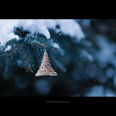 And so this is Christmas (stella-mia) Tags: christmas winter snow norway 85mm christmastree snowing christmasornament desember sn seasonsgreetings christmasmood canon5dmkii annakrmcke
