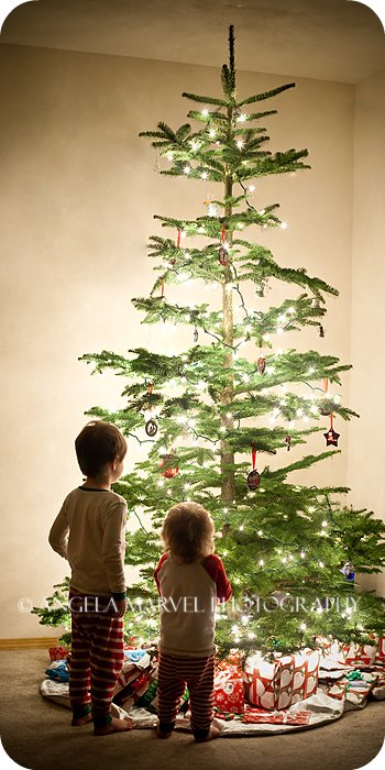 We like the tree :)
