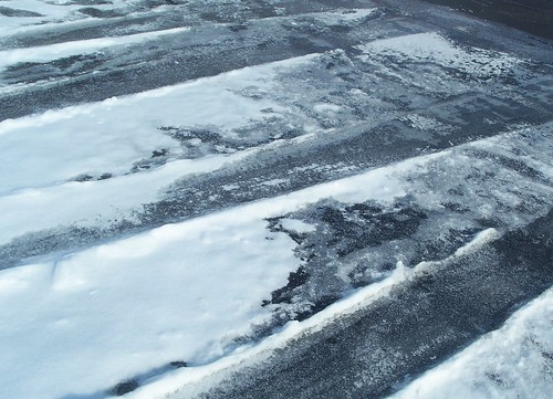 snowy tracks2
