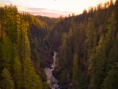 Skokomish River sunrise