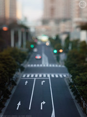 Choices: Odaiba, Tokyo (Alfie | Japanorama) Tags: road trafficlights mediumformat tokyo evening bokeh arrows odaiba bellows tokyobay roadmarkings tiltshift mamiya645afd mediumformatdigital mamiyazdback mamiyaautobellows kodak127mmektarf47