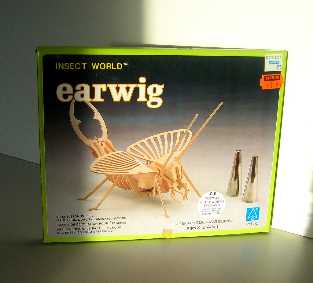 Toyway Products: 3D Wooden Skeleton Earwig Puzzle Model