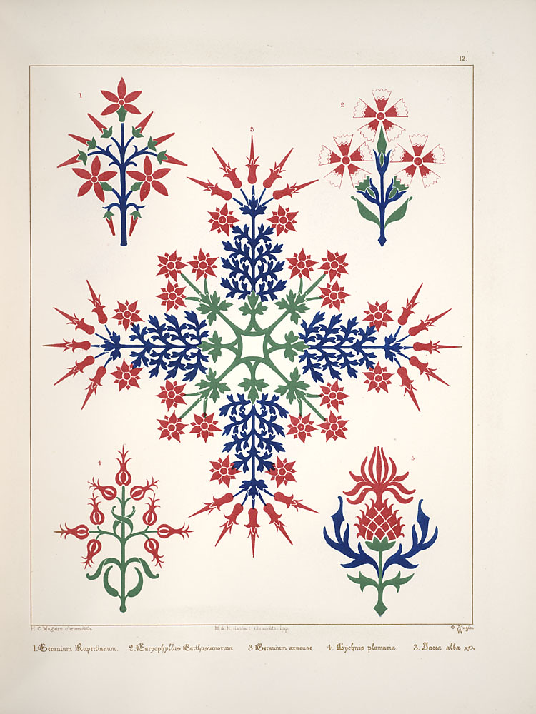 decorative motifs of snow crystals