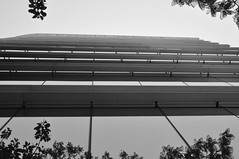 Olhando para cima eu vejo o novo (AlexJ (aalj26)) Tags: city cidade bw white black argentina branco arquitetura de buenosaires nikon para pb preto e contraste vista ponto cima olhando d90 alexj aalj26 alexanderaljorge