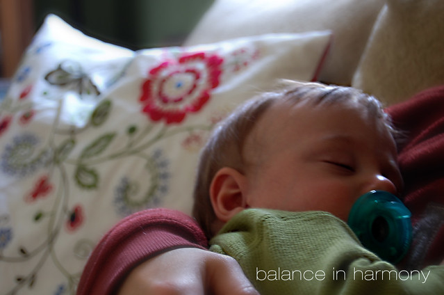 balance in harmony {picture winter day 10}