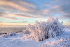 Icy Superior North Shore Sunrise (Josh Merrill Photography) Tags: statepark winter copyright lake ice minnesota sunrise season photography woods superior josh mn lakesuperior grandmarais boundarywaters allrightsreserved northwoods merrill bwca gunflint gunflinttrail goosberryfalls gunflintlake boundarywatercanoearea joshmerrillphotography