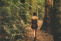 mount glorious | film (aimee catt) Tags: mountain film girl 35mm canon back rainforest ae1 brisbane bushwalk mountglorious agedfilm