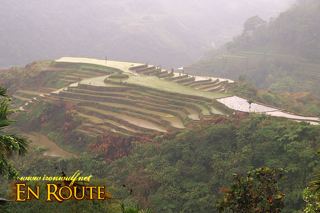 Hungduan Rice Terraces Seen from the School