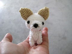 White Chihuahua with brown ears (PV Salad) Tags: red dog brown white chihuahua rabbit chicken cat crochet ears yarn collar amigurumi