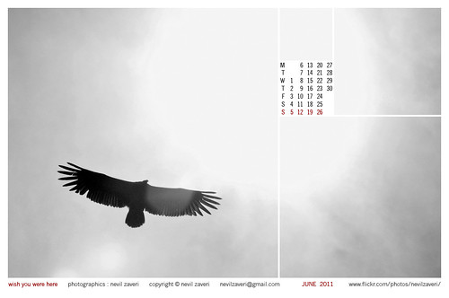 june 2011 calendar wallpaper. calendar for june 2011